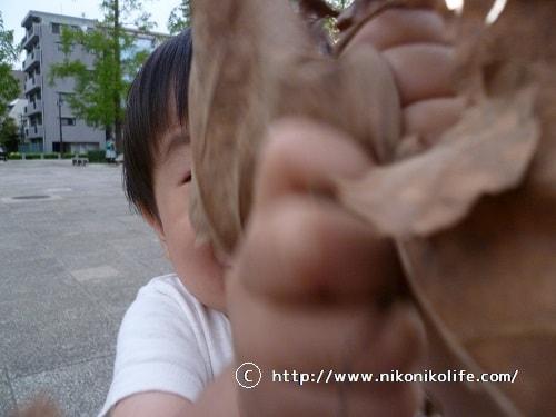 公園遊び15092102-min