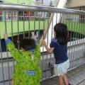 3歳児、アソボーノとラクーアでデートをするの巻