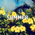 年少さんの夏休みの過ごし方と夏の思い出を振り返る
