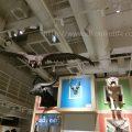 国立科学博物館(かはく)のコンパスに行ってきたよ!